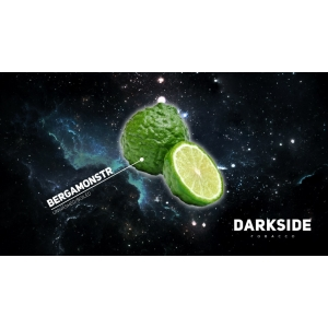 DarkSide BERGAMONSTR